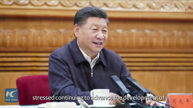 Xi stresses development of science, technology to meet significant national needs